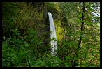 Visit the Columbia River Gorge Picture Gallery