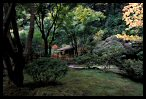 Visit the Japanese Garden Photo Gallery