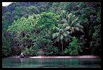 Visit the Palau Image Gallery
